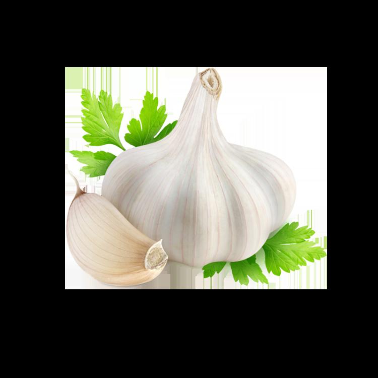 garlic@1.25x